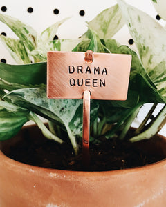 Drama Queen Plant Marker Stake