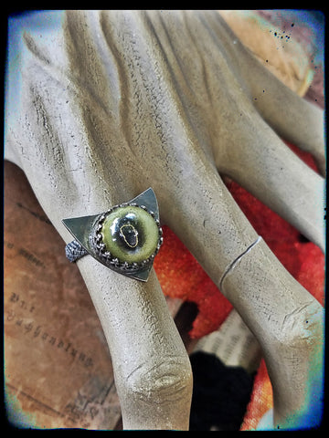Taxidermy toad eye sterling silver ring size 7.5