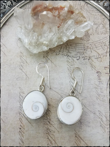 Shiva shell 925 silver earrings~