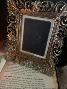 4.5 x 4.5 inch antique frame real spider web art~