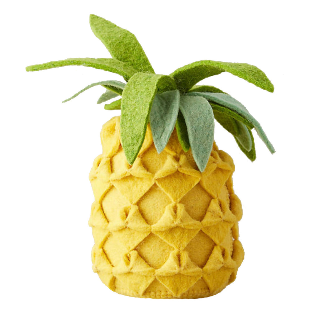 Pineapple Book Stopper