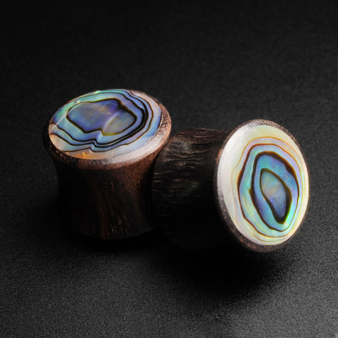 Sono Wood Double Flare Plug With Abalone Shell Inlay