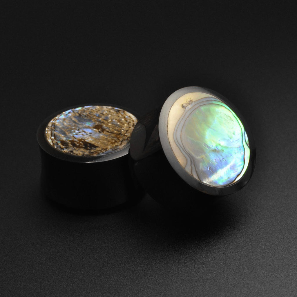 Horn Double Flare Plug With Abalone Sell Inlay
