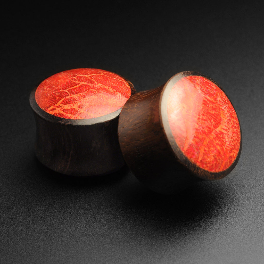 Sono Wood Double Flare Convex Plug With Red Coral Inlay