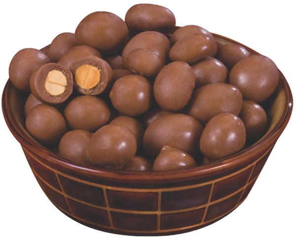 Chocolate Covered Peanuts 1 lb Bag