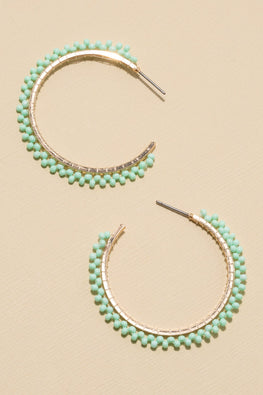 Type 1 Mint to Be Earrings