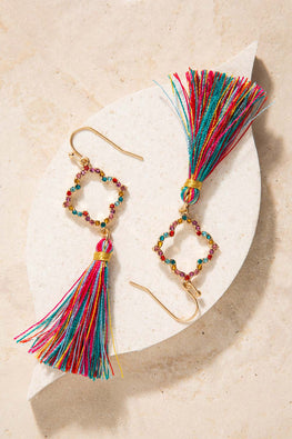 Type 1 Salsa Lessons Earrings