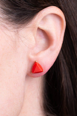 Type 3 Trip to Moab Earrings
