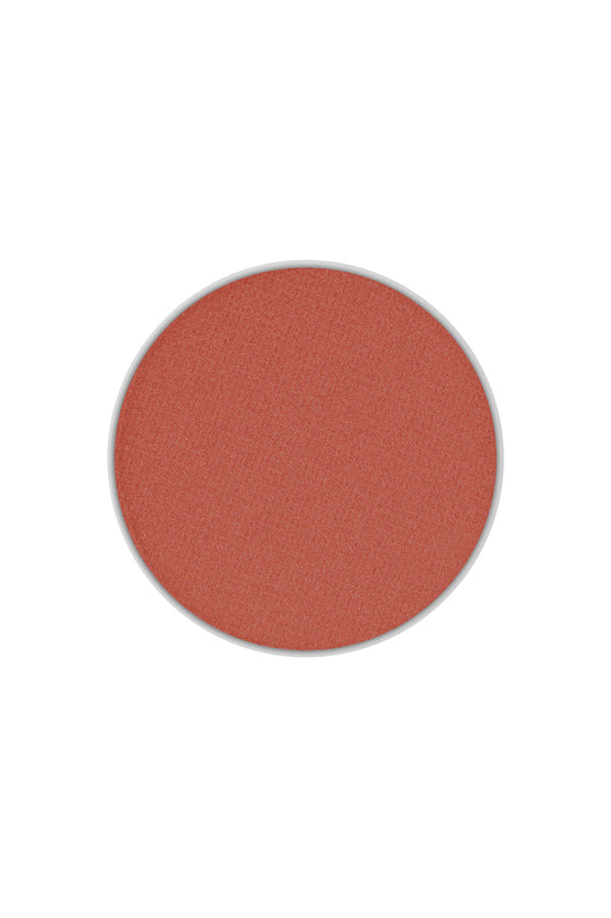 Type 3 Eyeshadow Pan - Chestnut Matte