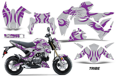 Tribe - SILVER background PURPLE Design
