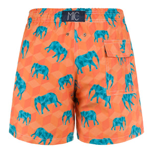 EleFUNt Swim Shorts