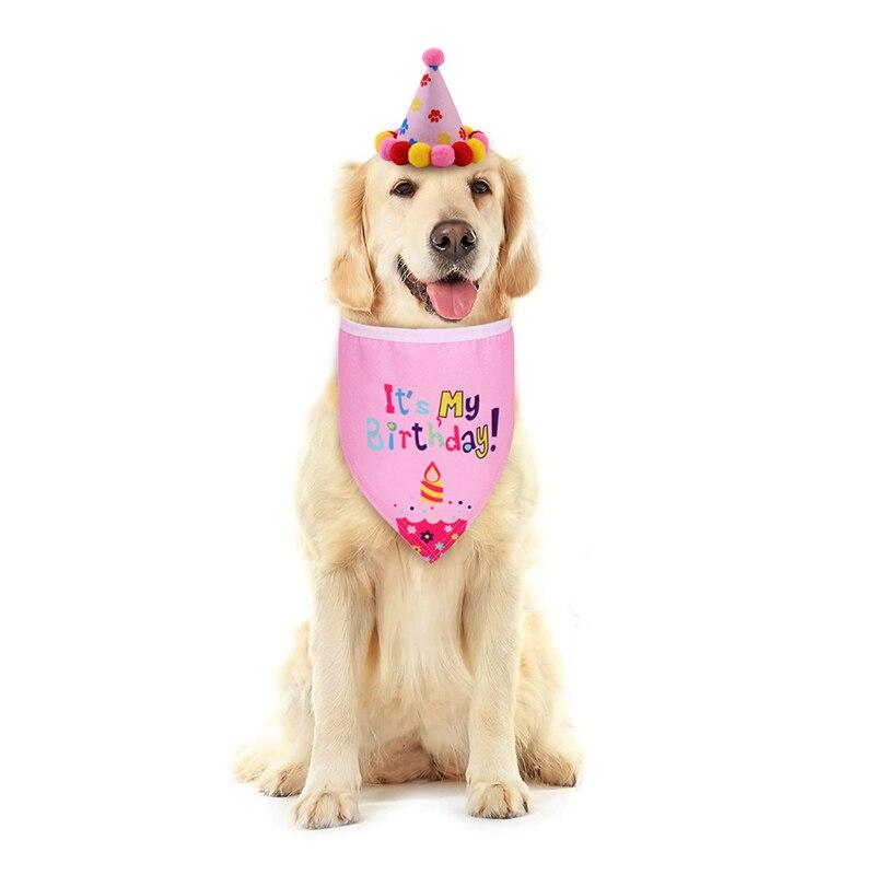 "Furry Baby ""It's My Birthday"" Bandana + Hat Set - The Palm Beach Baby"