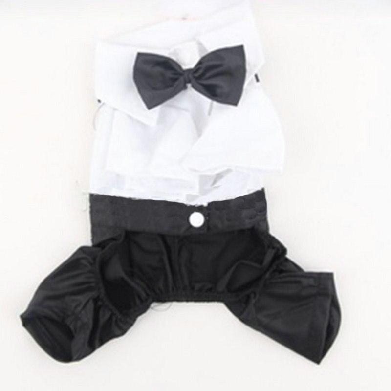 Adorable Pet Tuxedo - The Palm Beach Baby