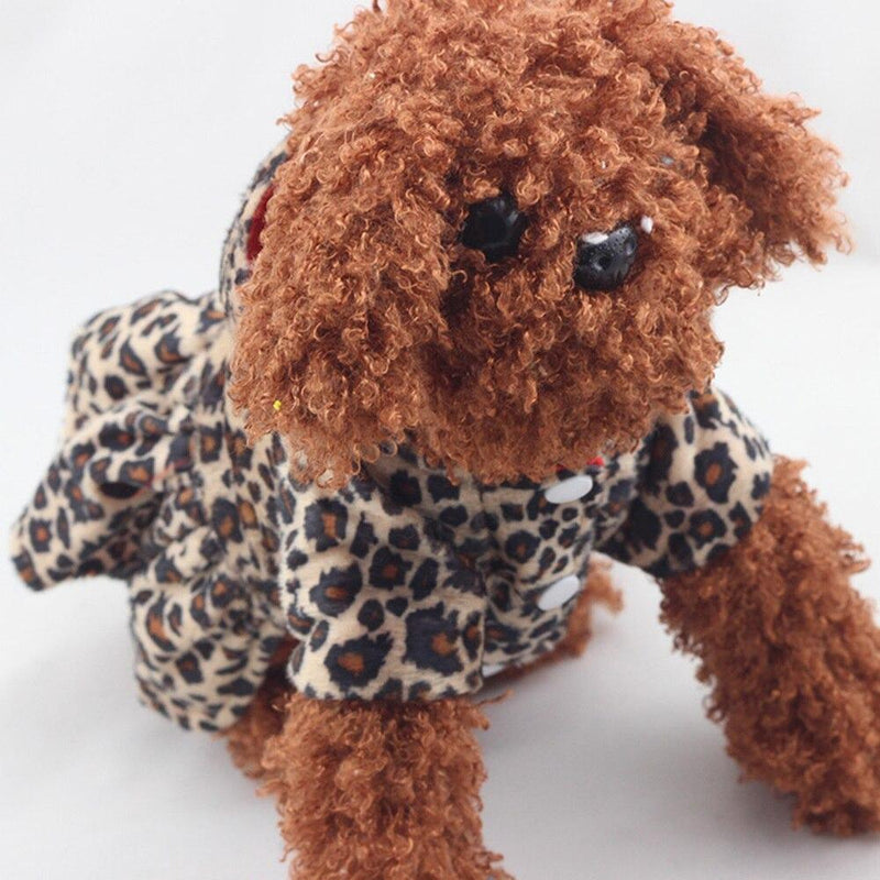 """Leopard Cutie"" Leopard Print For Dogs - The Palm Beach Baby"