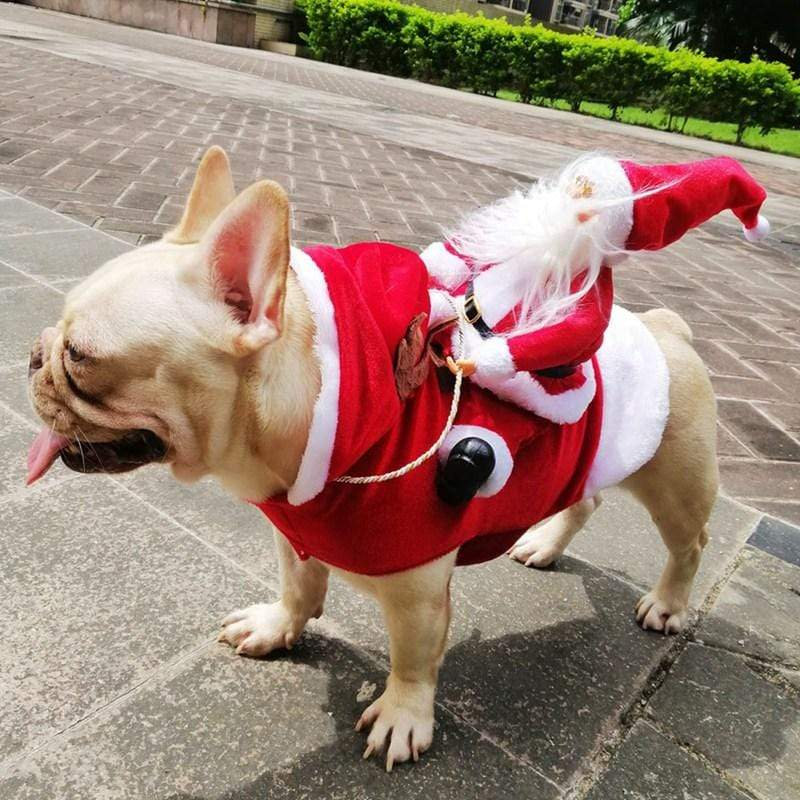 Furry Baby Santa Clause Coat - The Palm Beach Baby