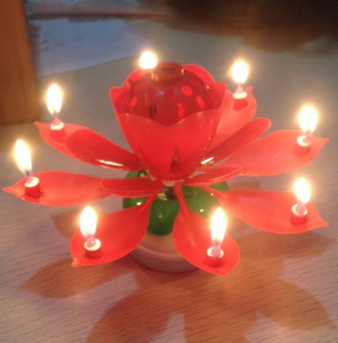 Musical Lotus Flower Birthday Candle