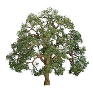 JTT 44-51MM LIVE OAK (3)