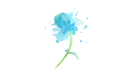 The Open Road watercolor logo of a  blue rose