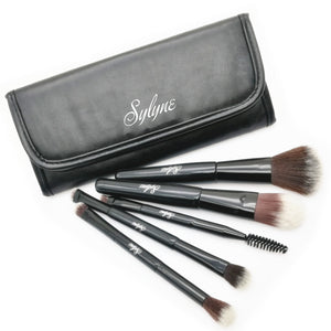 Professional 5 Piece Multipurpose Makeup Brush Set With Bag