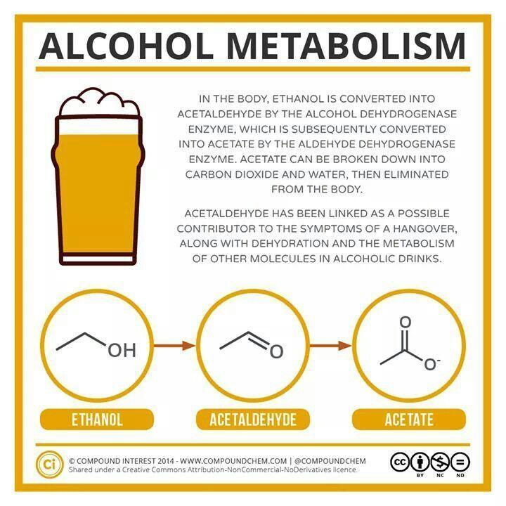 Alcohol Metabolism Explained in 30 Seconds by Intox-Detox CEO Andy Bennett