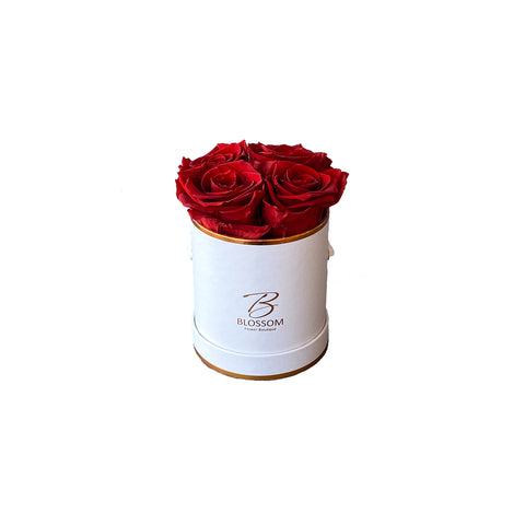 Infinite Roses - Small Box - White