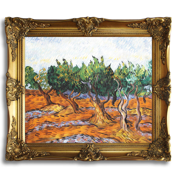 "VG57-Olive Grove-Vincent van Gogh Repro Oil Painting on Canvas 20x24"" - USA Oil Painting- Art Supplies"