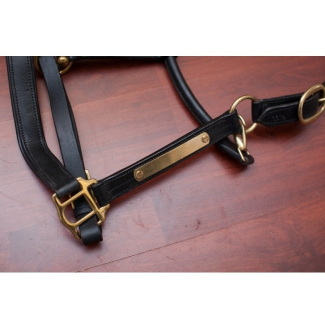 Leather Halter With Nameplate - Black