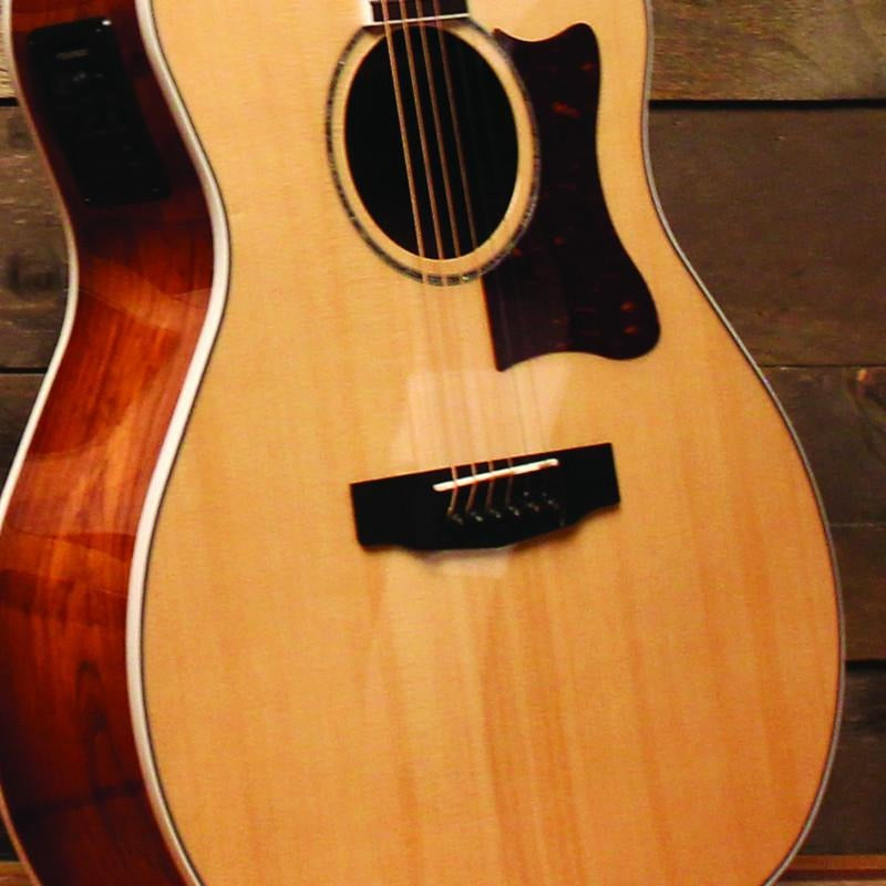 SOLID EUROPEAN SPRUCE TOP