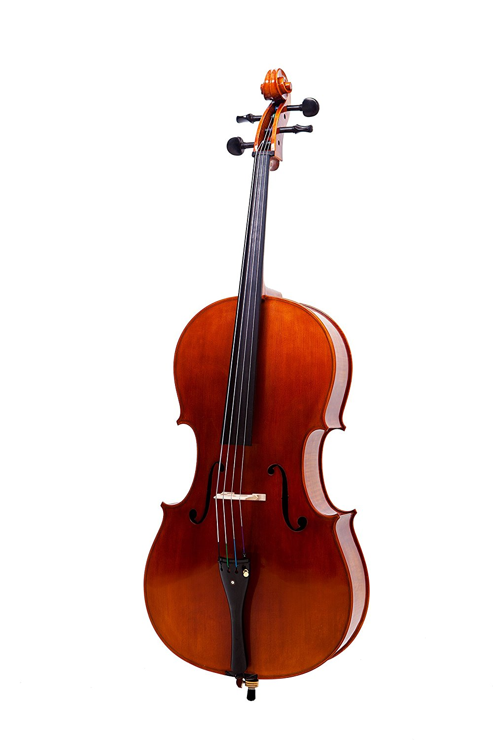 SANDNER 4/4 MASTER CELLO OUTFIT