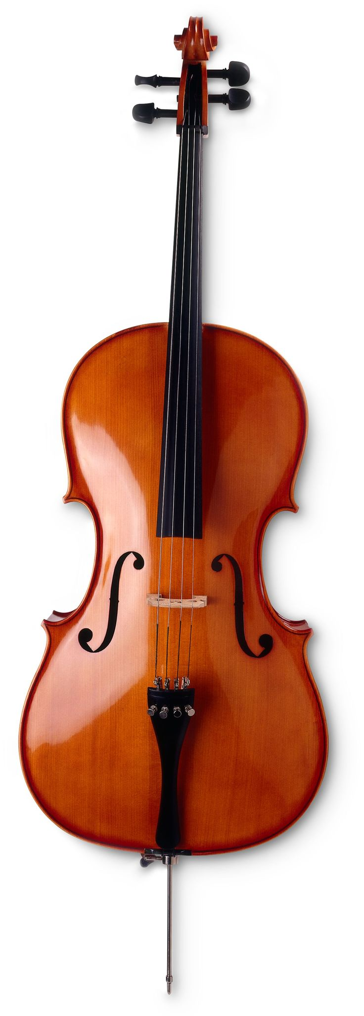 SANDNER SC6 4/4 CELLO OUTFIT FRONT