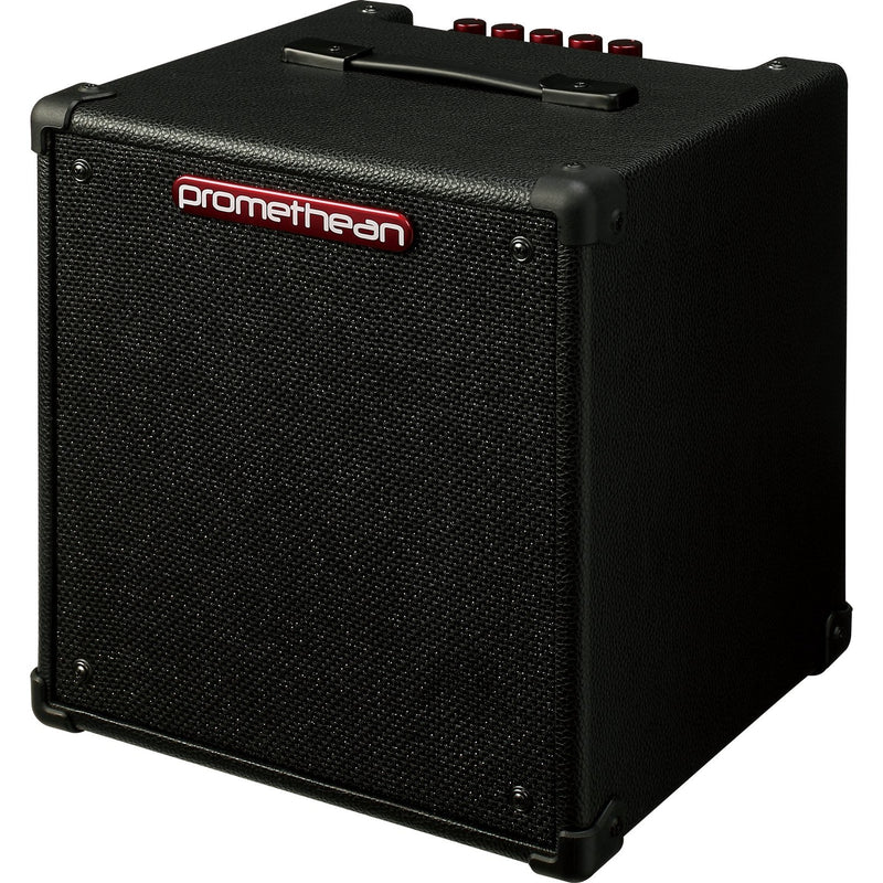 IBANEZ P20 PROMETHEAN BASS COMBO FRONT