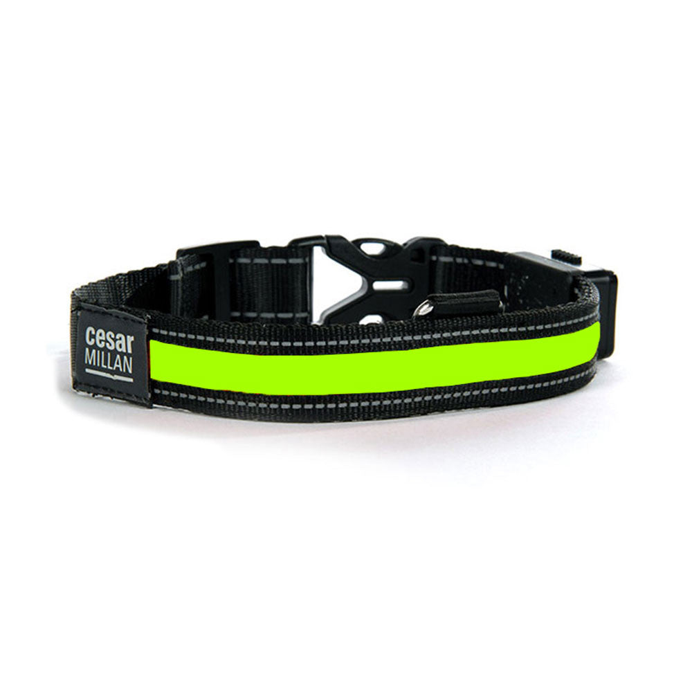 Cesar Millan Bright Light Collar