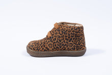 Falcotto eerste stapper leopardino