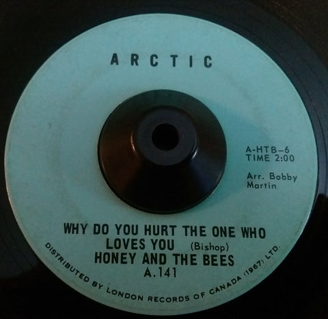 HONEY AND THE BEES - WHY DO YOU HURT THE ONE WHO LOVES YOU (ARCTIC) Vg Condition