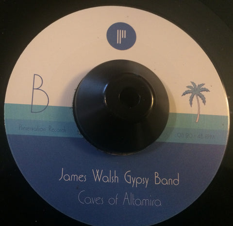 JAMES WALSH GYPSY BAND - I'VE GOT THE FEELIN' (PRESERVATION RECORDS) Mint Condition