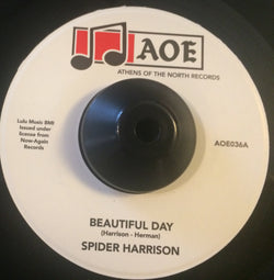 SPIDER HARRISON - BEAUTIFUL DAY ( AOE) Mint Condition