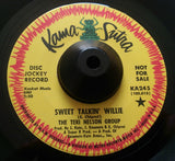 TERI NELSON GROUP - SWEET TALKIN' WILLIE (KAMA SUTRA) Ex Condition