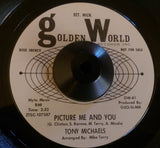 TONY MICHAELS - PICTURE ME AND YOU (GOLDEN WORLD W/D) Ex Condition