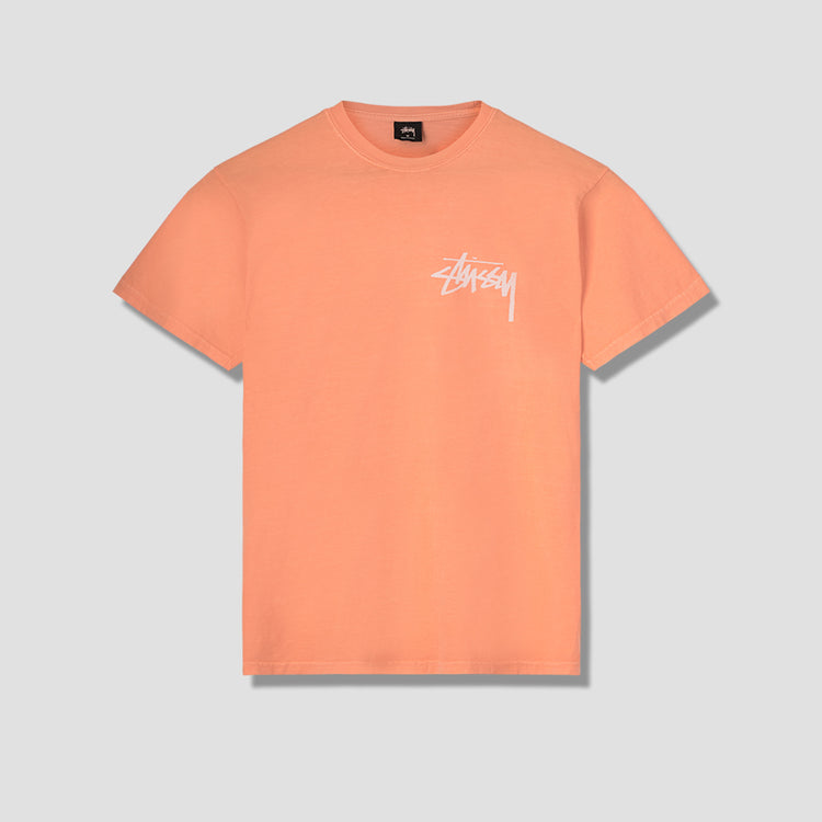 STOCK PIG. DYED TEE 1904360 Orange