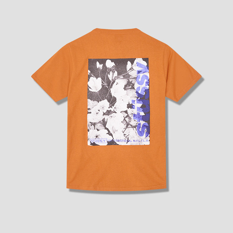 WINDFLOWER TEE 1904589 Brown