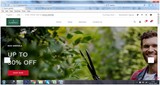 Gardening- Website Design-2