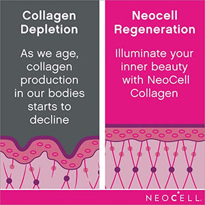 Super Collagen Powder Types 1 & 3 – 6,600mg