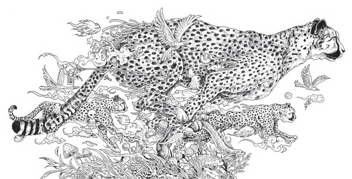 Animorphia Coloring Book ArtTik