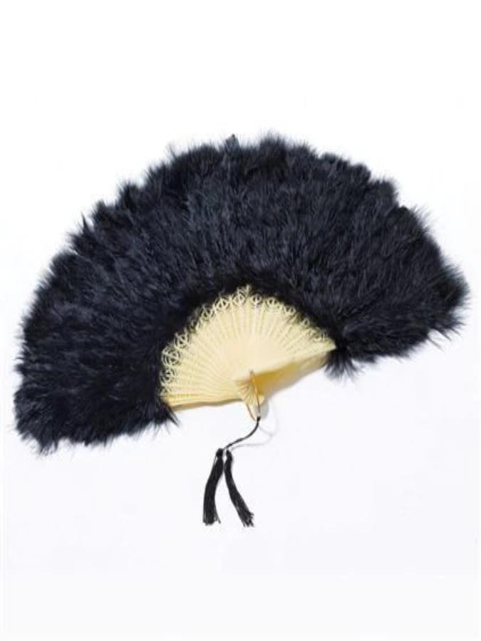 Fan Black Feather