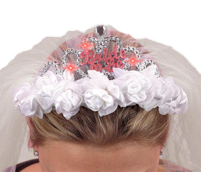 Hen Night Bride to BE  Tiara and Veil