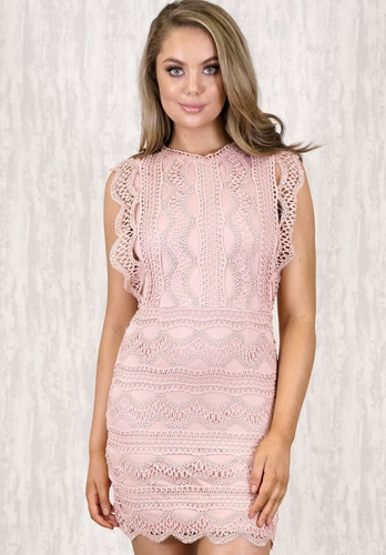 Abbie Lace Mini Dress - My Bargains Boutique