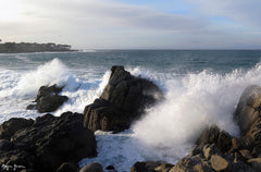 Pacific Grove, California - Ref: 710