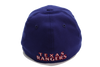 New Era Texas Rangers 39Thirty Logo Pack Fitted
