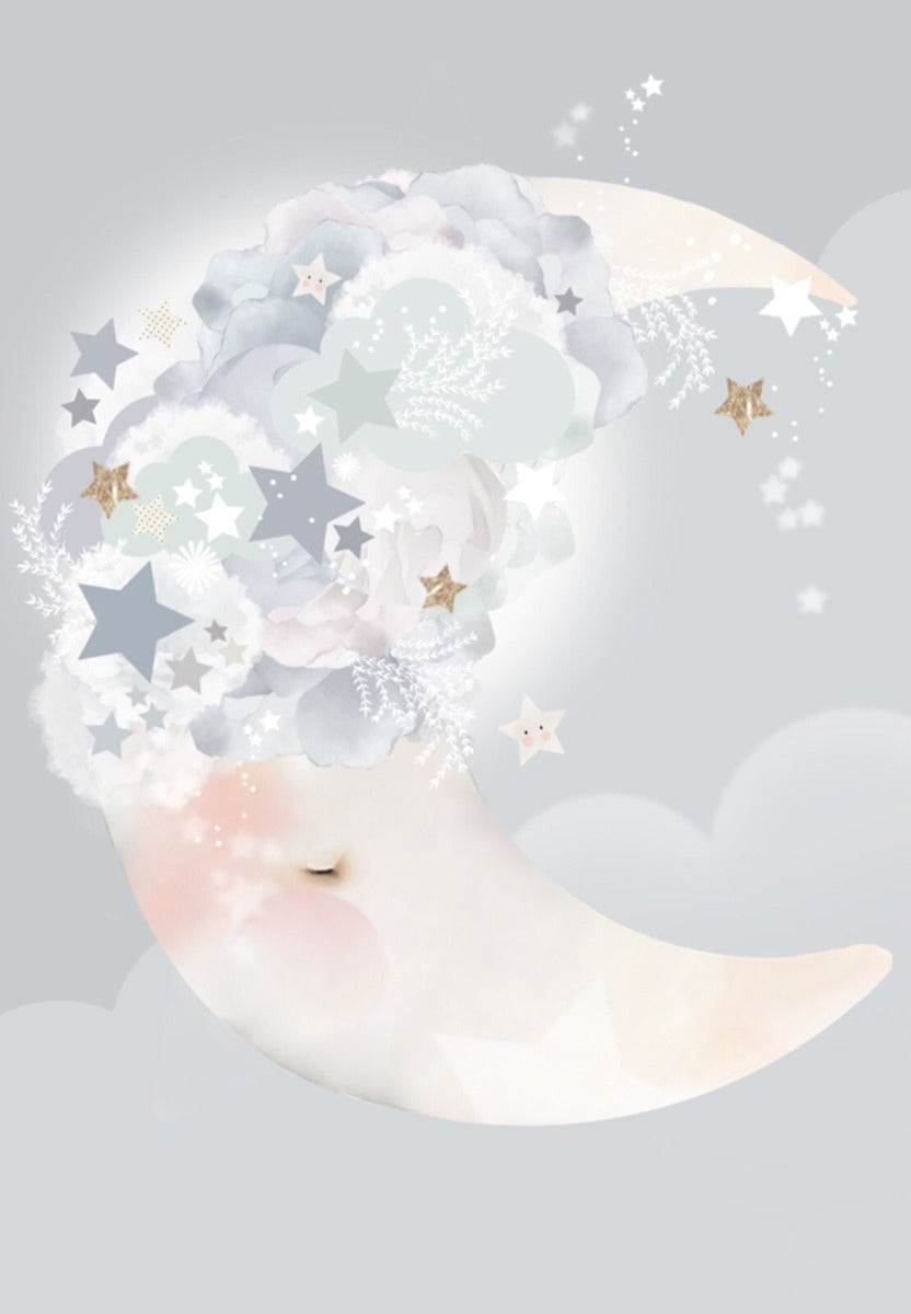 Schmooks Moon Dreams Limited Edition Print - A2
