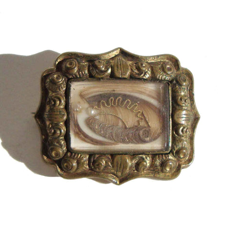 Antique Victorian Hairwork Brooch Mourning Pin Memento Mori